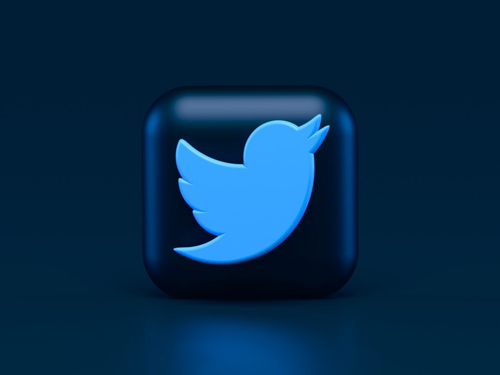 The twitter icon